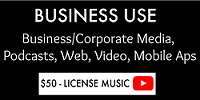 Business Use License
