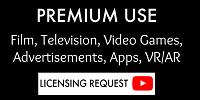 Premium Use License